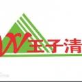 王子清网络科技有限公司