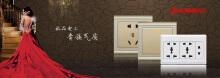 极浦国际电工
