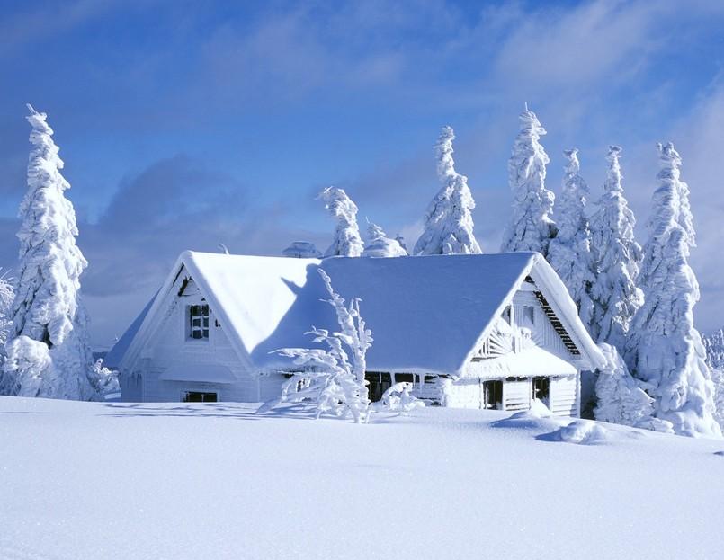 冰清玉洁,冰寒彻骨,冷血无情……这些词语都曾被人加诸于冬天的身上.图片