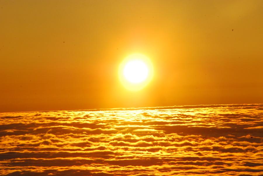 太阳小溪大树照片合成
