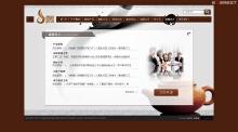 威客服务:[19915] 标准型网站开发