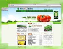 威客服务:[20492] 企业展示网站设计