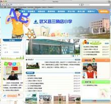 武义县三角店小学网站建设案例