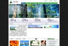海林集团网站建设