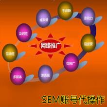 威客服务:[33929] SEO服务,网站优化,网站推广,网络推广,带操作竞价