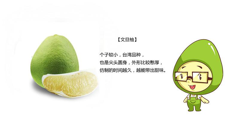 柚子的图片头像可爱