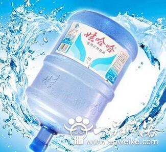 """""""在娃哈哈桶装水的广告"""