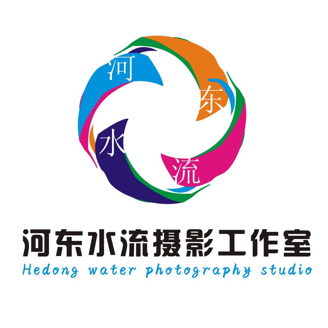 河东水流婚礼摄影logo设计