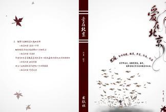 小说封面设计欣赏