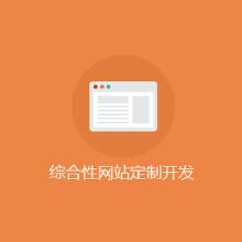 综合型网站开发