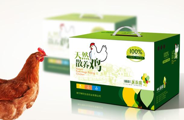 琳轩生态农产品包装设计