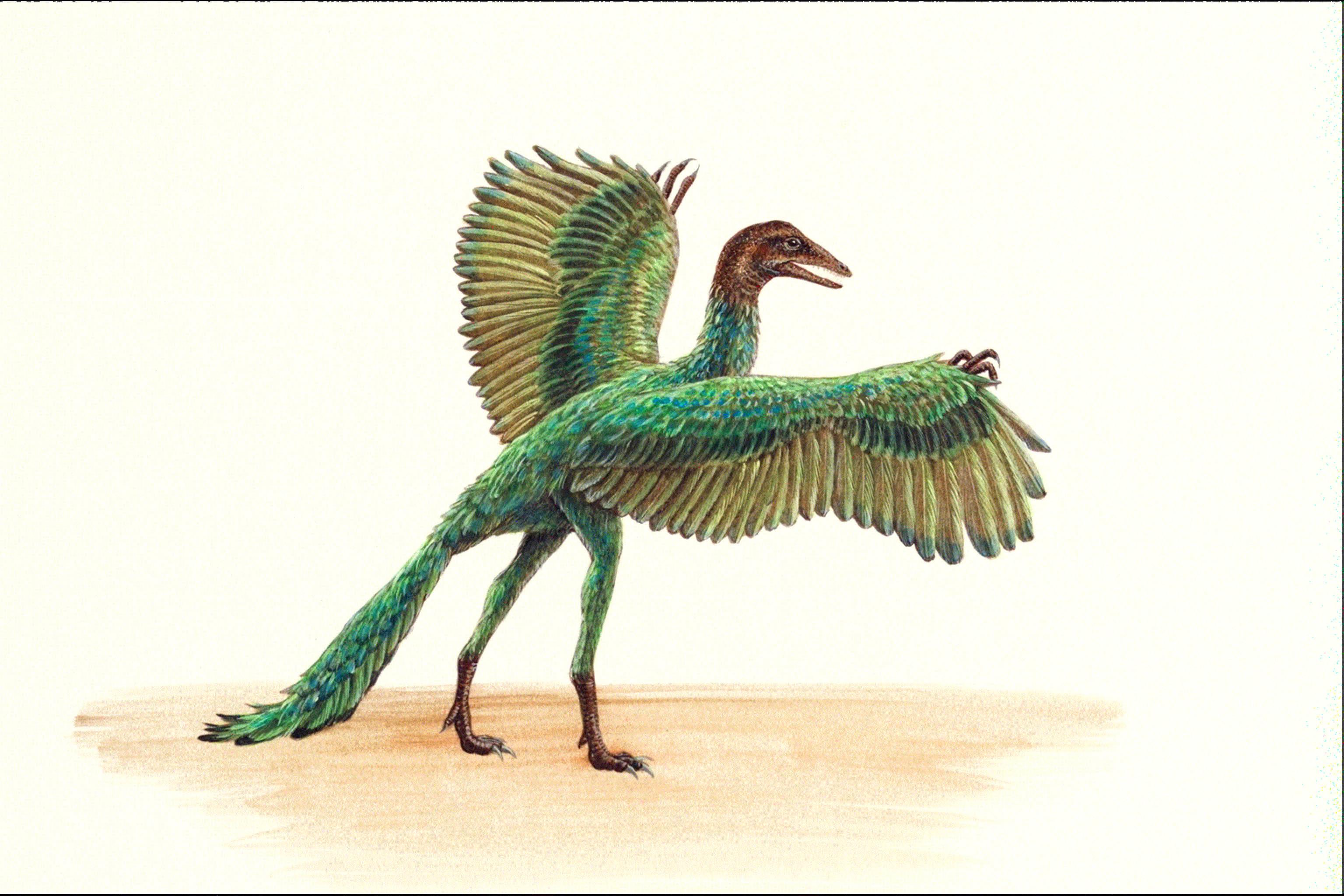 侏罗纪时代恐龙3d模型制作
