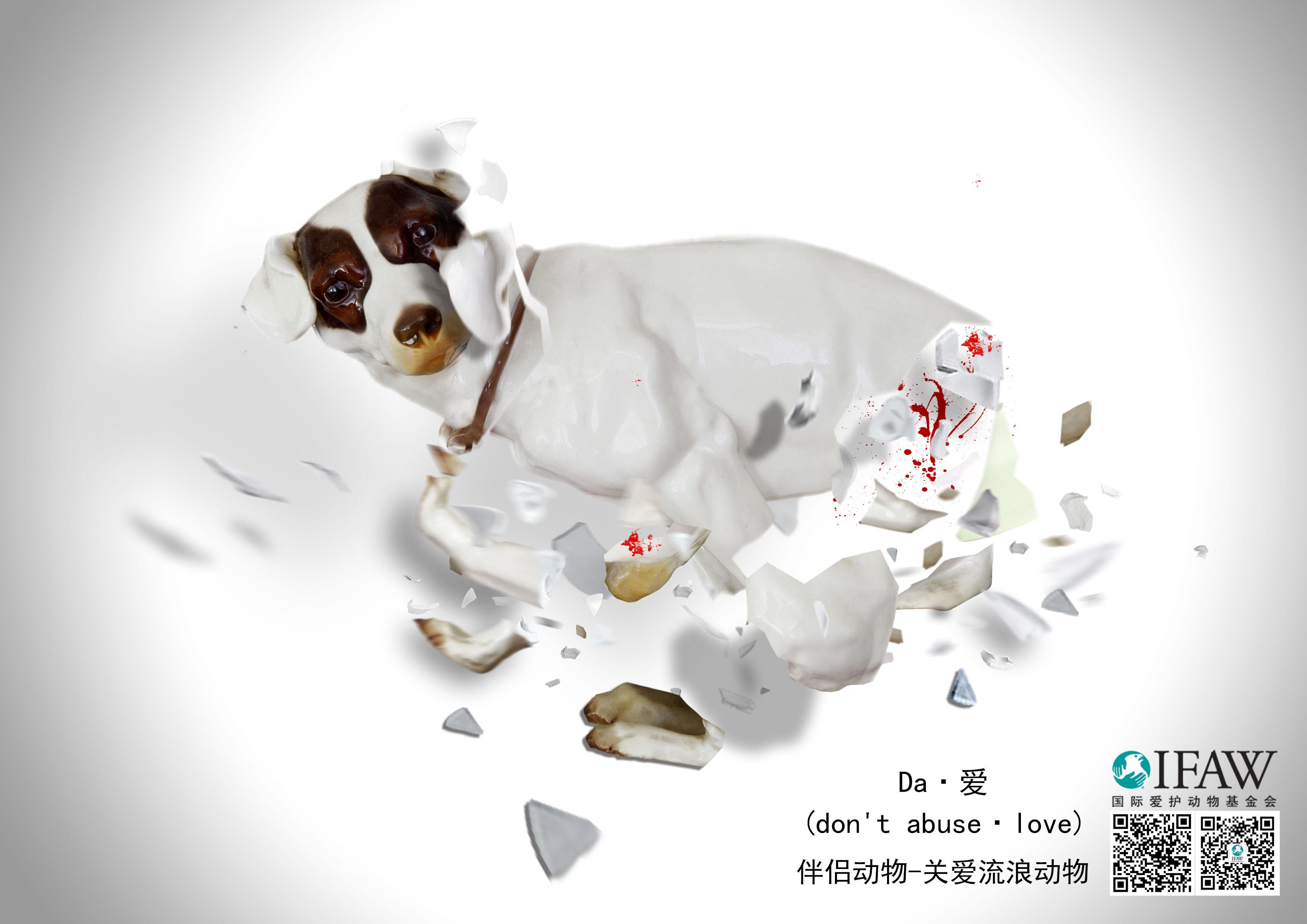 关爱伴侣动物海报