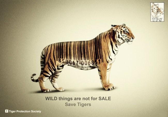 269life系列保护动物宣传公益海报