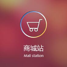 【商城站】适用于想强化传统企业线上品牌影响力,实现线上线下优势整合