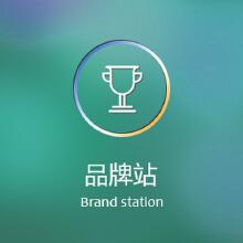威客服务:[25270] 【品牌站】适用于大中型企业、集团企业、用于企业品牌形象展示