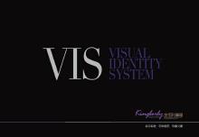 VI系統設計案例