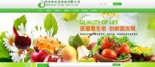 寿光市亿龙食品有限公司网站建设案例