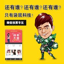 威客服务:[62274] 微信投票营销活动开发