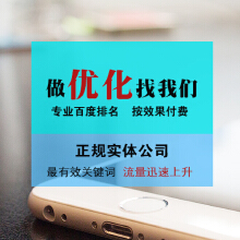 威客服务:[62757] 【高级SEO优化】 六大搜索引擎推广 关键词排名优化
