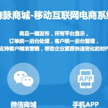 威客服务:[65113] 电商系统定制开发