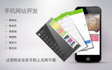 威客服务:[71381] H5手机网站设计与开发