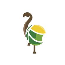威客服务:[72129] 鸟 自由 服装 飞翔 鹤 鞋子 logo