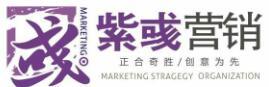紫彧营销咨询机构