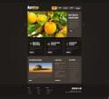 网页、界面
