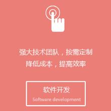 威客服务:[60295] 软件开发