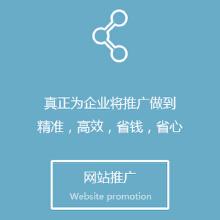 威客服务:[60297] 网站推广