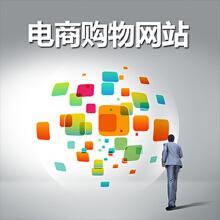 威客服务:[77604] 【电商网站】网站建设电商购物网站 B2B2C商城系统定制开发