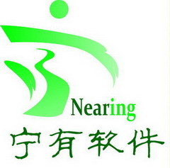 宁有信息技术(上海)有限公司