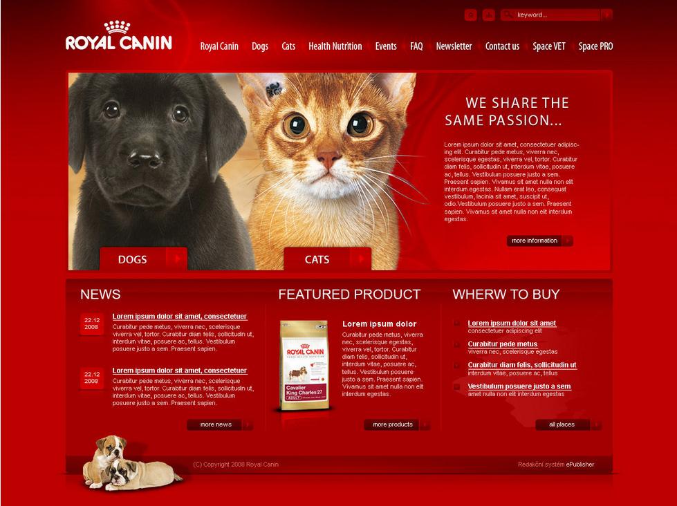 网页设计技巧,如何让网站表现效果更佳