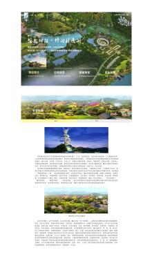 网站开发加网页设计