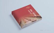 绍丰和郫县豆瓣宣传画册