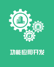 威客服务:[85381] 模板插件应用开发