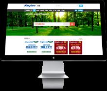 企业网站设计/开发