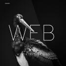 威客服务:[89238] 风与树 | 企业网站设计开发/专题页面设计/淘宝页面设计