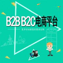 B2C、B2B2C电商平台开发