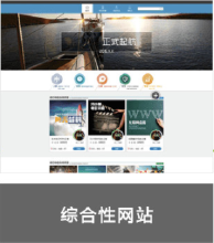 威客服务:[90177] 综合性网站开发
