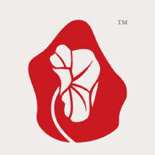 威客服务:[91190] 【非蝉品牌】logo设计 商标设计 标志设计 品牌LOGO 公司LOGO