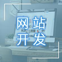 威客服务:[91092] 网站开发