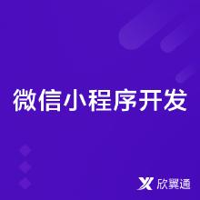 微信小程序/H5开发/微信公众号/微信定制开发/微商城