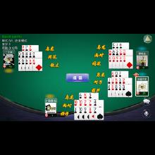 威客服务:[95618] 十三张 十三水 房卡约局 金币匹配 多种玩法 支持动态加入玩家