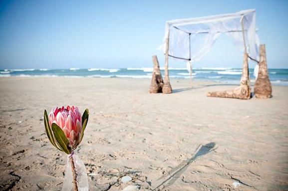 什么类型的海滩婚礼策划可以给整个婚礼加分