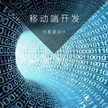 威客服务:[97727] 【天极星】移动应用程序开发