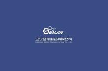 VI视觉系统设计——辽宁盛京制药有限公司