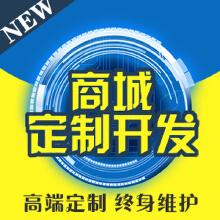 商城微信小程序开发专业应定制开发