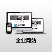 威客服务:[101050] 企业网站